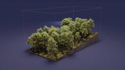 Museo del Parco Nazionale del Vesuvio